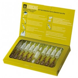 Endocare Ampol Biorepair, 10 ampolle da 2 ml