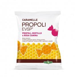 Erba Vita Propoli Evsp Caramelle gusto Mirtillo-Rosa Canina, sacchetto da 65 g