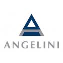 Scopri tutti i prodotti Angelini